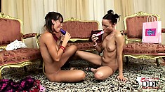 Secret meeting of horny lesbians ends up with double masturbation