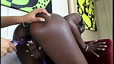 These dark chocolate sluts are in black pussy paradise and find ecstasy