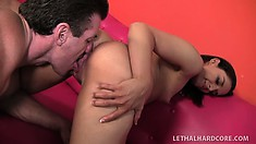 Irresistible eye candy Sheena gets fucked until she screams with pleasure
