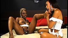 Black amateurs give into sensual and intense lesbian fucking