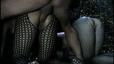 Wild girl in a fishnet bodysuit Velvet Brandi gets fucked hard by Ben