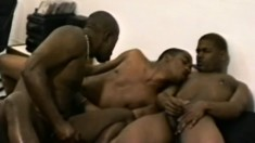 Horny black studs having an intense gay threesome in a hotel room