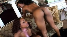 Two fascinating caramel lesbian lovers help each other find pleasure
