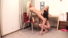 Kinky college girls take turns working their fiery pussies on a dildo