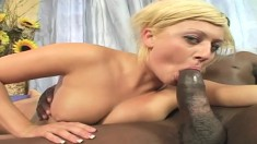 Cute blonde Chloe Chanel takes Julius Ceazher's black dick for a ride
