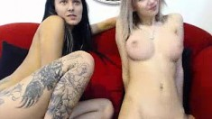 Blonde Lesbian Babe Licks Busty Agent