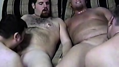 A group of chubby men make each other moan like little bitches