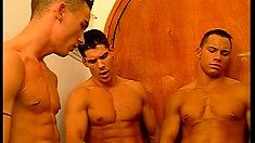 In a luxurious mansion, a group of hunky studs indulges in gay action
