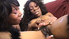 Ebony lesbians in sexy lingerie have fun with dildos and find the pleasure they seek