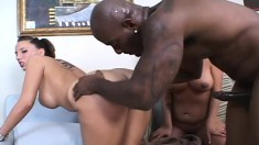 Two busty brunettes taste each other's wet cunts and share a big dick